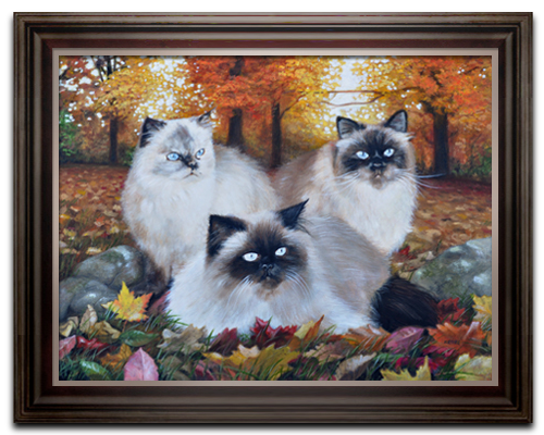 A portrait of Three Cats